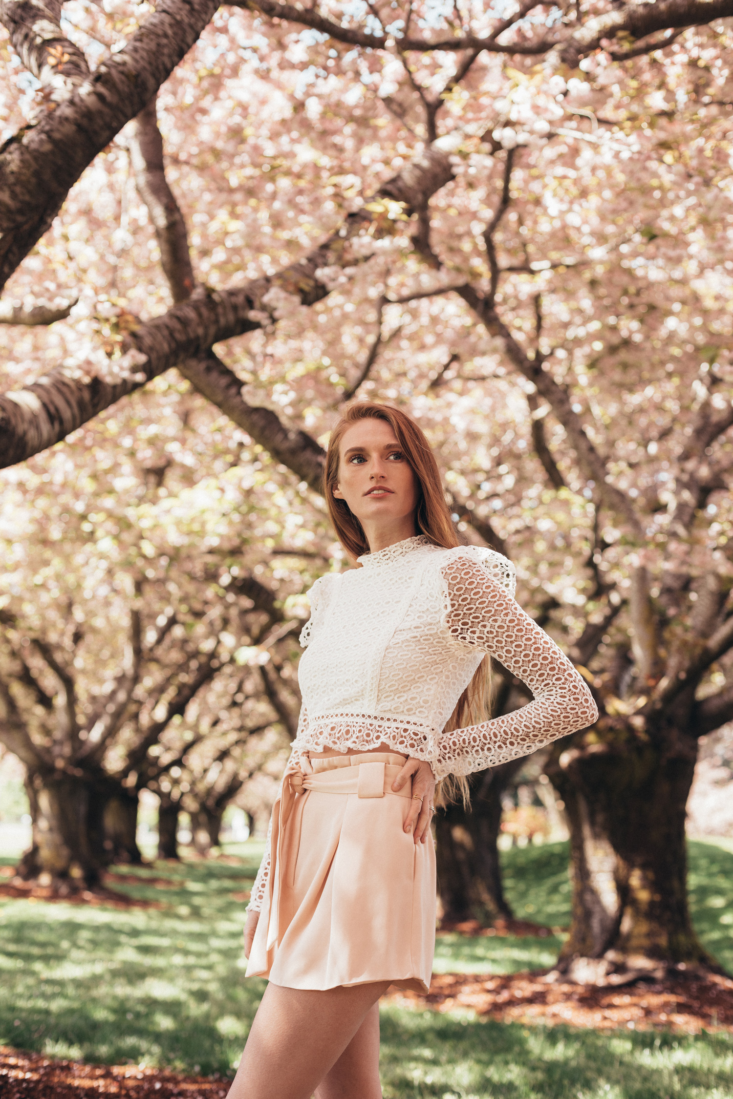 Shirofugen Cherry Blossom Trees Spring Clark College Pastel Peach Outfit