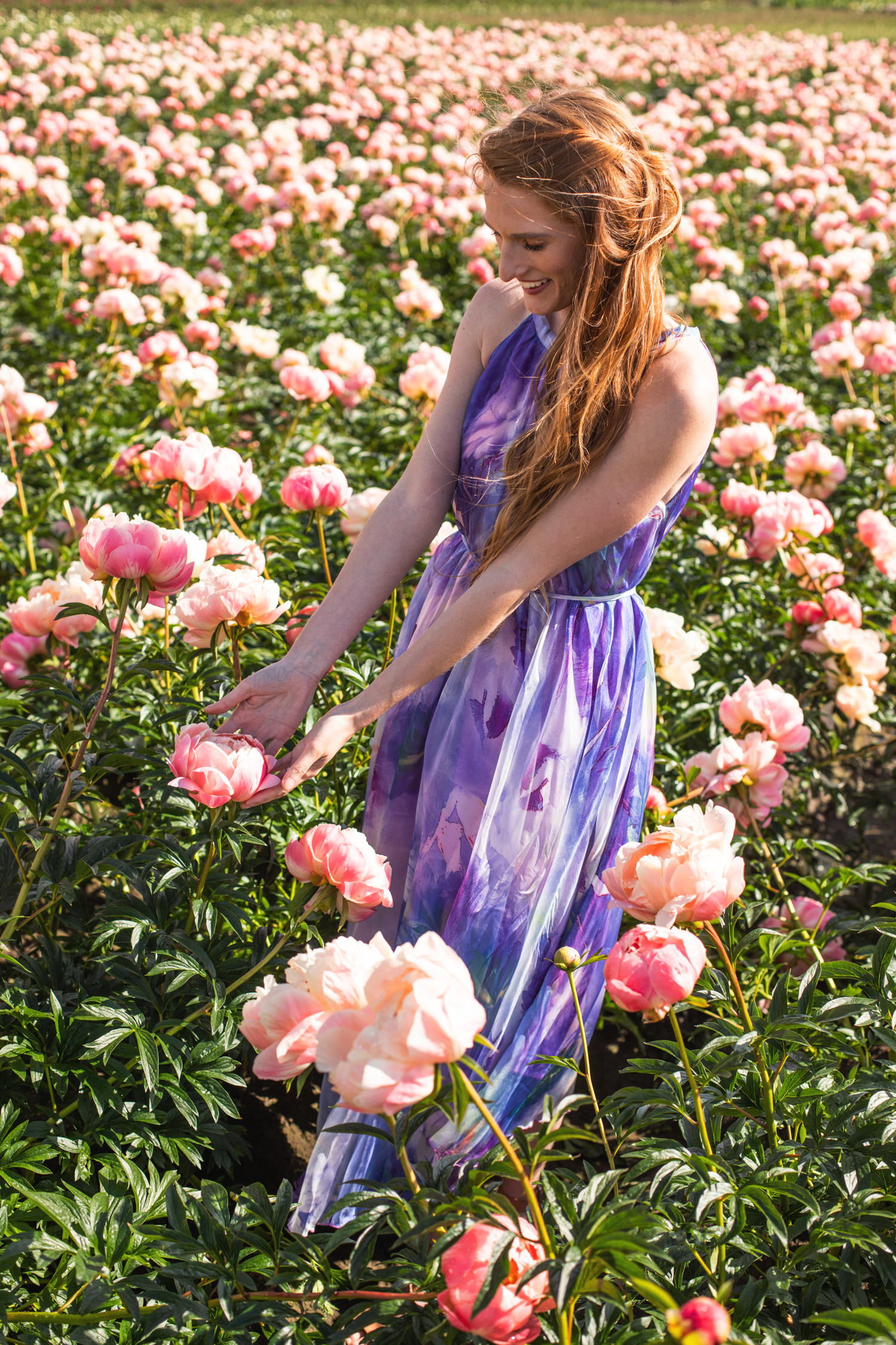 Chicwish Watercolor Dress Adelman Peony Gardens